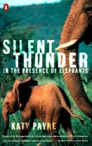 Silent Thunder : In the Presence of Elephants
