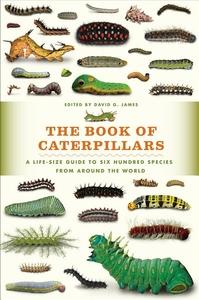 The Book of Caterpillars