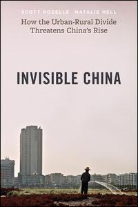 Invisible China