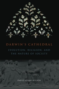 Darwin's Cathedral:Evolution, Religion, and the Nature of Society
