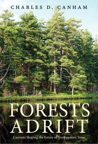 Forests Adrift: Currents Shaping the Future of Northeastern Trees