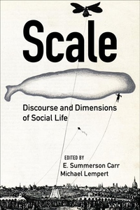 Scale : Discourse and Dimensions of Social Life
