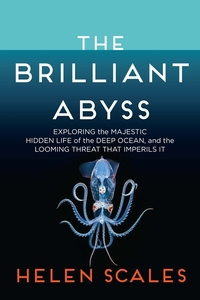 The Brilliant Abyss