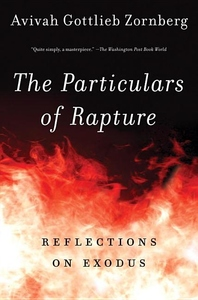 The Particulars of Rapture:Reflections on Exodus