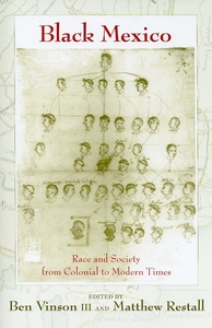 Black Mexico: Race and Society from Colonial to Modern Times