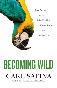 Becoming Wild