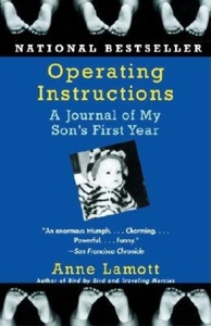 Operating Instructions:A Journal of My Son's First Year