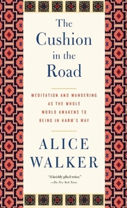 The Cushion in the Road:Meditation and Wandering As the Whole World Awakens to Being in Harm's Way