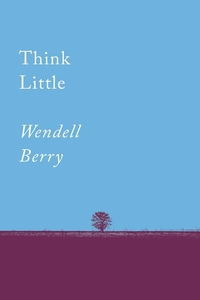Think Little: Essays