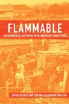 Flammable:Environmental Suffering in an Argentine Shantytown