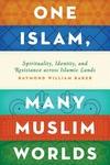 One Islam, Many Muslim Worlds: Spirituality, Identity, and Resistance across Islamic Lands