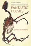 Fantastic Fossils: A Guide to Finding and Identifying Prehistoric Life