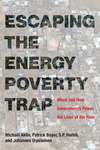 Escaping the Energy Poverty Trap : When and How Governments Power the Lives of the Poor