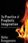 The Practice of Prophetic Imagination:Preaching an Emancipating Word