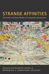 Strange Affinities:The Gender and Sexual Politics of Comparative Racialization