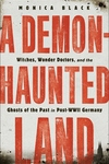 A Demon-Haunted Land