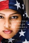 Practice of Islam in America : An Introduction