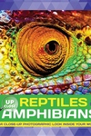 Reptiles & Amphibians: A close-up photographic look inside your world