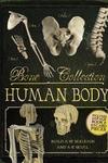 Bone Collection: Human Body