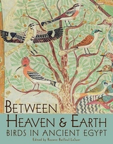 Between Heaven and Earth:Birds in Ancient Egypt